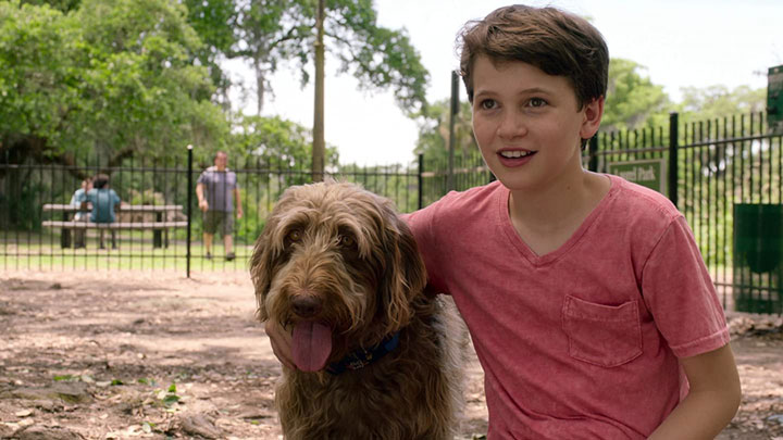 best-kids-movies-prime-think-like-a-dog
